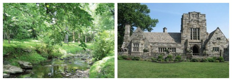 merion collage