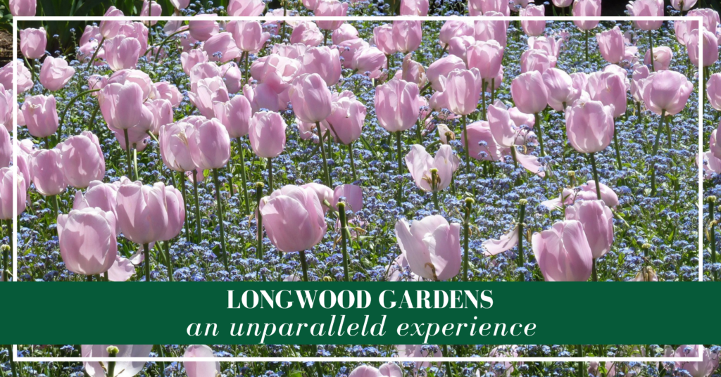 Longwood Gardens is considered the finest botanical garden in the country and it deserves the title.